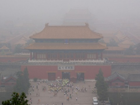 China completes rollout of pilot carbon markets